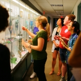 A group of students and a curator look at an exhibit case filled with glass objects